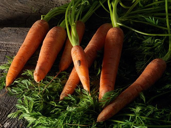Морковь в медицинском смысле ценят за каротин, а в эстетическом — за производную каротина — оранжевый цвет.